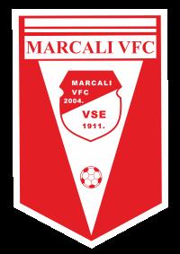 logo vfc 200