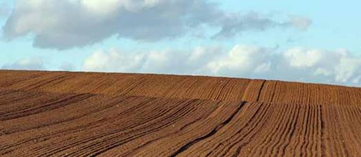 ploughed field lines