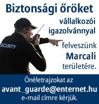 bizt_allas