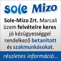 mizo_allas