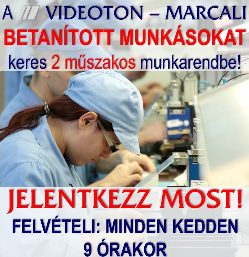 videoton-5