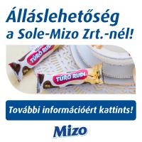 Sole-Mizo